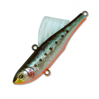 BL-orange berry pilchard