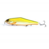 #031 Green Back Gold Fish
