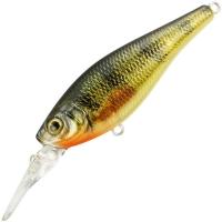 Yellow Perch