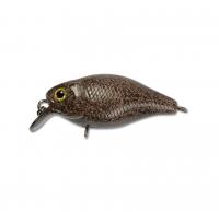 tackey brown