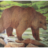 Мишень JVD бумажная Медведь